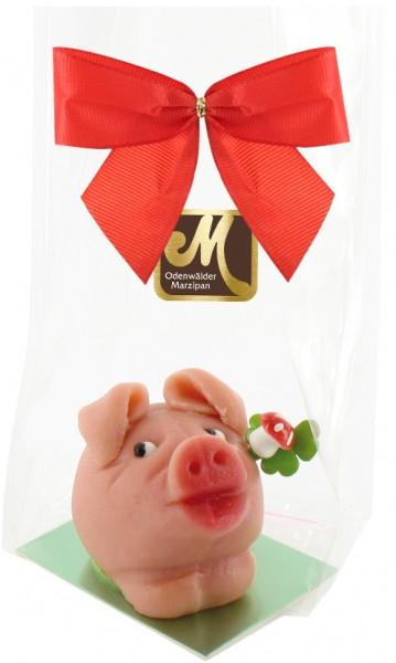 Pig ¨Schlappi¨