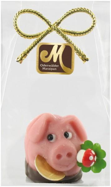 Schwein lachend mit Schokolade