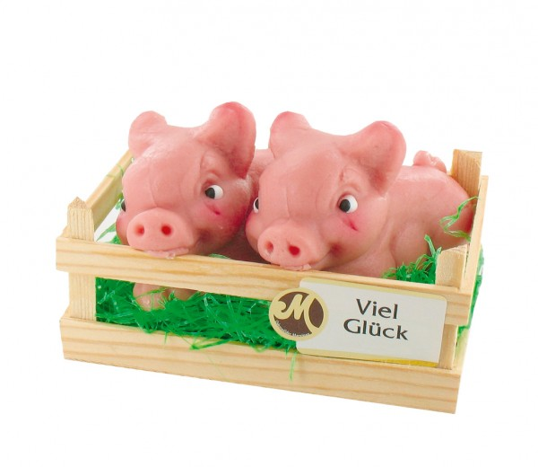 Pigs in a wooden box