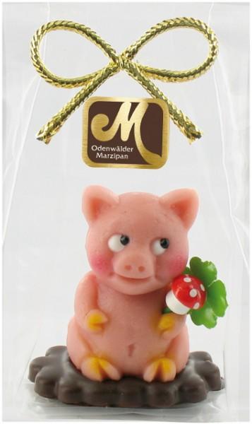 Schwein Bruno auf Schokoplättchen